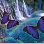 Rainbow Waterfall Greetings Card - Blank